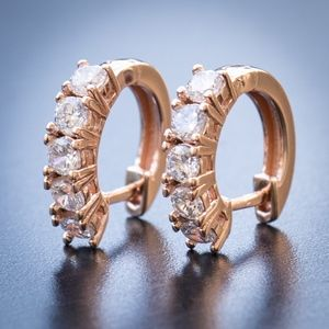 Small Rose Gold Iced 5A CZ Stone Hoop Earrings